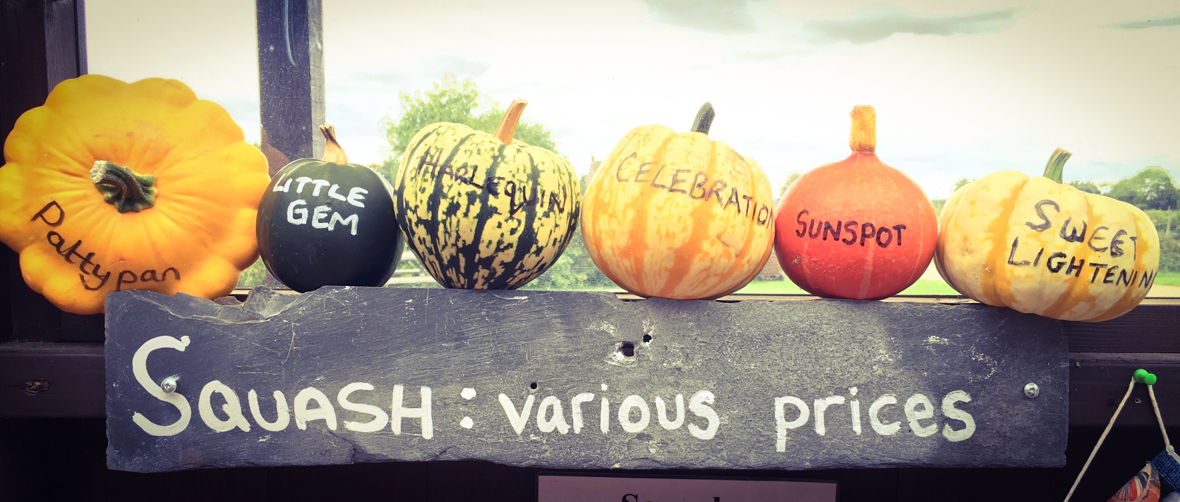 Hill Farm Squashes